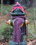 Ein Beitrag kleidete richtig für den Winter in Seattle, Washington 1 an Lizenzfreie Stockbilder