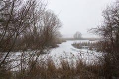 Ein bereifter See im Winter, mit Anlagen und Baum ganz um ihn und Stockbild