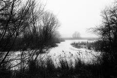 Ein bereifter See im Winter, mit Anlagen und Baum ganz um ihn und Stockfotografie