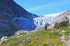 Ein Bergführer, der zu Fabergstolsbreen, ein Gletscherarm des großen Jostedalsbreen-Gletschers, Norwegen, Europa wandert Lizenzfreies Stockbild