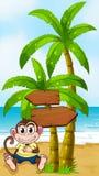Ein besorgter Affe am Strand mit einem leeren Hinweis Lizenzfreies Stockfoto