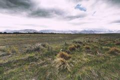 Ein beträchtliches Ackerland mit Berg im Hintergrund Stockfotografie