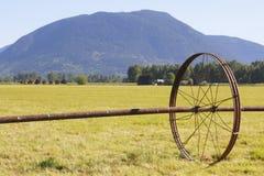Ein Bewässerung-Wasser-Rad für die Landwirtschaft Stockbilder