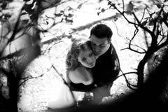 Ein Bild des Paarumarmens surronded durch Herbstniederlassungen Stockfotos