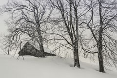 Winterzeit Stockfoto