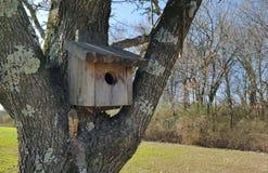 Ein Birdhouse im Schnee Lizenzfreies Stockbild