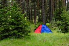 Ein blaues und rotes Zelt im Wald Stockbilder