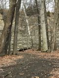 Ein Blick in den winterlichen Ruhm von Rocky River Reservation in Cleveland, Ohio, USA Stockfotografie