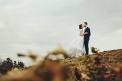 Ein Blick von den gefallenen Blättern auf einem Hochzeitspaar, das auf küsst Lizenzfreie Stockbilder