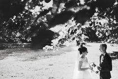 Ein Blick von hinten die Niederlassungen auf einem Hochzeitspaar Stockfotografie