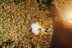 Ein Blick von oben genanntem auf einer Braut, die auf dem Schwingen über einem Rasen fu sitzt Lizenzfreies Stockbild