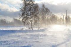 Ein Blizzard von okolitsej Stockbild