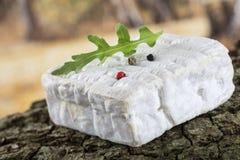 Ein Block von Pont-l'evequefranzose-Normandie-Käse Stockbilder