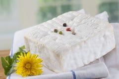 Ein Block von Pont-l'evequefranzose-Normandie-Käse Lizenzfreie Stockfotografie
