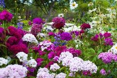 Ein Blumenstrauß der Blumen Lizenzfreie Stockfotos