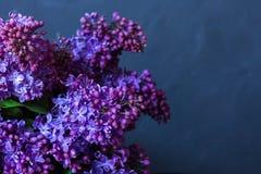 Ein Blumenstrauß der Flieder auf einem dunklen Hintergrund Stockfotografie