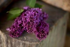Ein Blumenstrauß der Flieder, lila Blumen auf hölzernem bacground Stockbilder