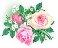 Ein Blumenstrauß der Rosen Lizenzfreie Stockfotografie