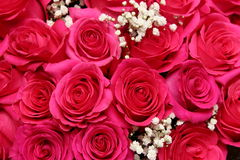 Ein Blumenstrauß der roten Rosen Stockbild