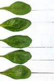 Ein Blumenstrauß des frischen Spinats auf einem Holztisch Lizenzfreies Stockbild