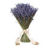 Ein Blumenstrauß des Lavendels stockbild