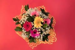 Ein Blumenstrauß von Blumen von den kleinen Gänseblümchen und vom mehrfarbigen gerber lizenzfreies stockbild