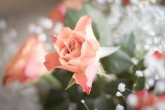 Ein Blumenstrauß von empfindlichen Rosen stockfotos