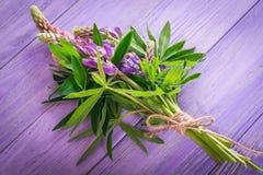 Ein Blumenstrauß von Lupines Stockfoto
