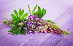 Ein Blumenstrauß von Lupines Stockbild