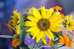Ein Blumenstrauß von Ringelblumen und von Sonnenblume auf einem blauen Hintergrund Werkstatt, die Blumenstrauß macht Stockbild