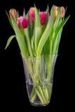 Ein Blumenstrauß von Tulpen stockfotografie