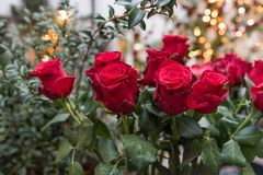 Ein Blumenstrauß der roten Rosen stockfotografie