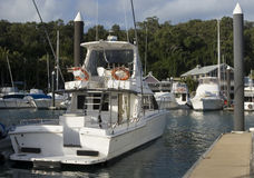 Ein Boot angekoppelt im Hamilton-Inseljachthafen Stockbild