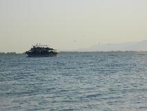 Ein Boot und Vögel Lizenzfreie Stockfotos