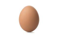 Ein braunes Ei auf weißem Hintergrund Lizenzfreie Stockfotografie
