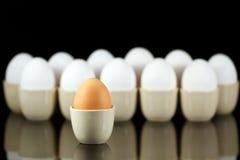 Ein braunes Ei vor weißen Eiern 2 Stockbild