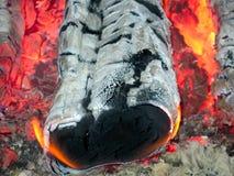 Ein brennendes Brennholz Lizenzfreie Stockbilder