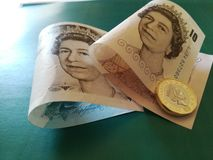 Ein britisches Pfund, neuer Typ 2017 Stockbilder
