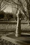 Ein Brunnen im Park stockbild
