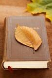 Ein Buch und ein Herbstblatt Stockfotografie