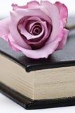 Ein Buch und ein rosafarbenes stiegen. Lizenzfreies Stockbild