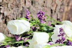 Ein buntes Stillleben mit Rosen auf dem Hintergrund der Barke Stockfoto
