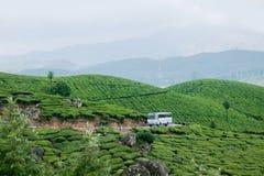 Ein Bus, der durch Munnar-Tee-Plantagen überschreitet Lizenzfreies Stockfoto