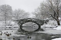Ein Central Park gefrorener See und eine Brücke im Schnee Lizenzfreie Stockbilder
