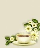 Ein Cup mit einem magischen Getränk Lizenzfreies Stockbild