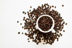 Ein Cup mit Kaffeebohnen Lizenzfreie Stockfotos