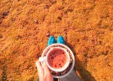 Ein Cup Schokolade stockbilder