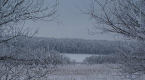 Ein düsterer Wintertag verstärkt den Eindruck des Geheimnisses der schlafenden Natur Lizenzfreie Stockfotografie