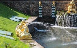 Ein des Satzes Brunnen im Gebiet von Peterhof-Palast, Mädchen zwei mit goldenen Fischen Peterhof, St Petersburg, Russland Lizenzfreie Stockfotos
