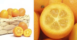 Ein Diptychbild der Frucht der japanischen Orange Stockbild